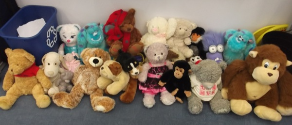 Year 3 bears waited patiently all morning!