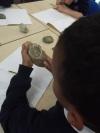 examining Jurassic Coast fossils