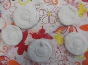 Plasticene ammonite imprints ready for casting