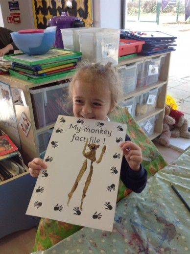 making monkey fact files in reception